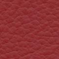 GAUCHO-AD6021