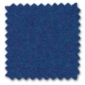 20 ELECTRIC BLUE