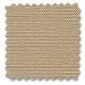 OLIMPO - 07 parchment
