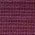 DORIA-6557-ORCHID