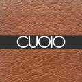 CUOIO - 685,00€